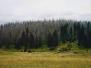 Březník 2004 léto