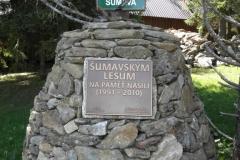P5150098_Bučina-Šumavským_lesům